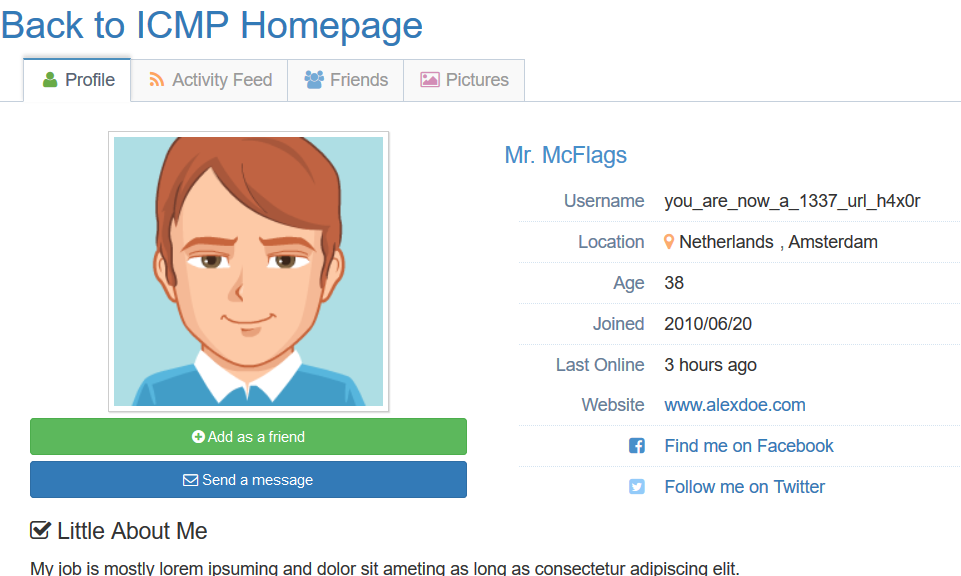 User profile of Mr. McFlags