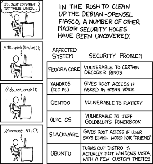 "XKCD comic ""Security Holes"""